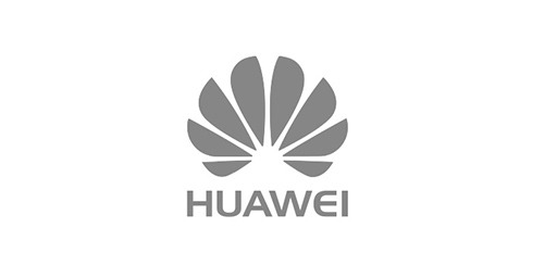 Huawei RAM partner